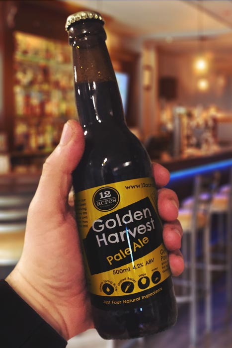 12 Acres Brewing Golden Harvest Pale Ale